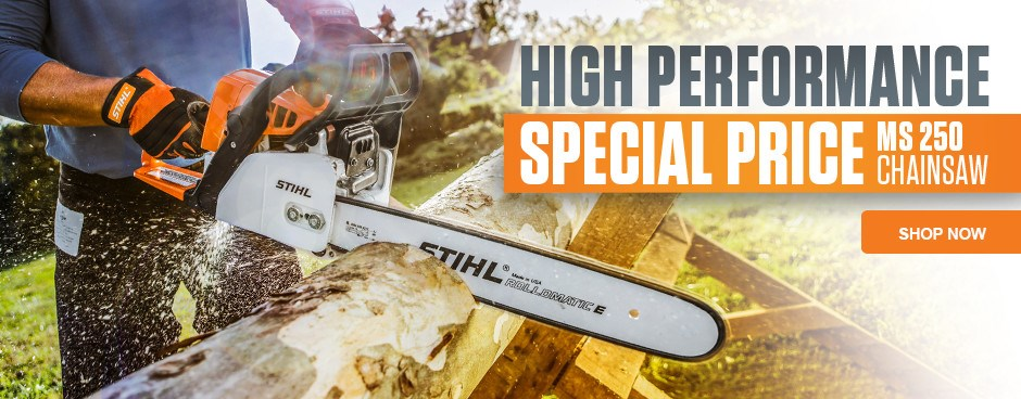 Save Now on MS 250 Chainsaw